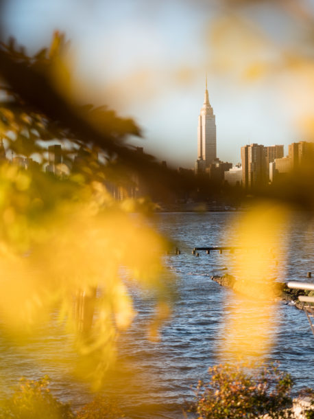 photo automne golden hour