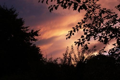 photo lumière golden hour Coucher de soleil ouverture profondeur de champ