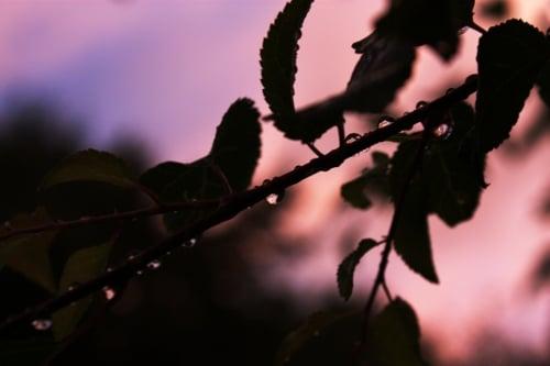 Photo Coucher de soleil après la pluie lumière