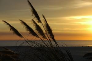 Photo silhouette coucher de soleil mer