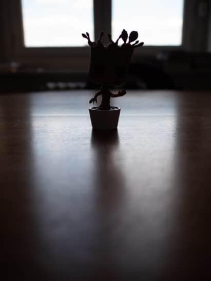 photo mode de mesure de la lumière évaluative / matricielle
