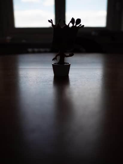photo mode mesure lumière pondérée centrale