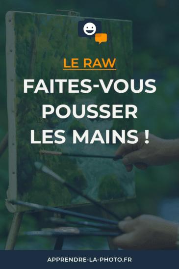 Le RAW: faites-vous pousser les mains!