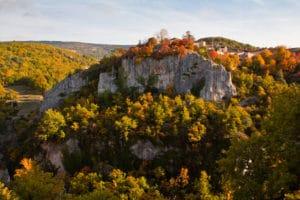 automne forêt nature couleur montagne