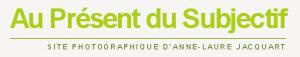 logo Au Présent du Subjectif le blog d'Anne-Laure Jacquart