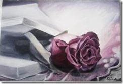 livre rose peinture photo fleur pétales flou