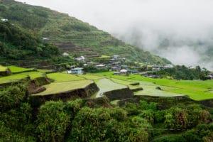 Rizieres en terrasses Cordilliere Philippines Cette photo a été prise dans un village tout paumé au Philippines dont je tairais le nom, cherchez-le vous même