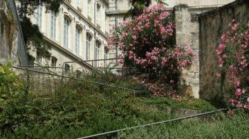 photo ville jardin composition