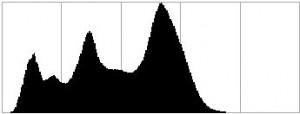 Cas n°1: faible dynamique, l'histogramme rentre facilement dans les limites. (en général, il faut rajouter du contraste au post-traitement)