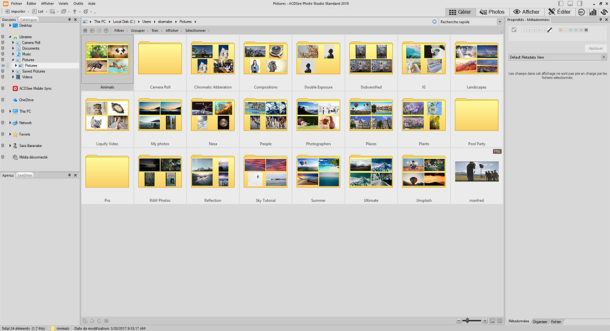 Interface ACD See Photo Studio Standard