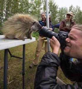 humour distance appareil photo photographe sensibilité ISO maximale animal