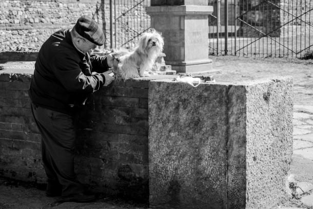 chien dans la rue vieil homme personne âgée maître noir et blanc