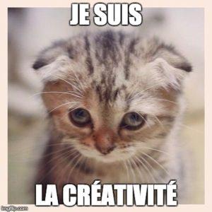 je suis la créativité photo chat