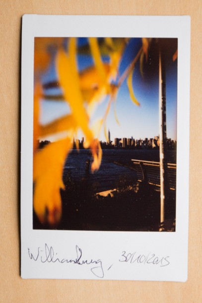 faible profondeur de champ feuilles photo instantanée Fuji Instax Mini 90 New-York williamsburg