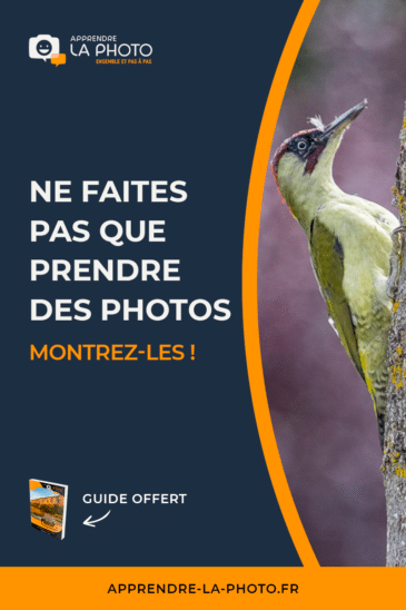 Ne faites pas QUE prendre des photos … montrez-les!