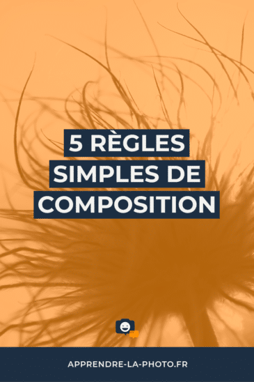 5 règles simples de composition
